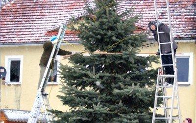 The Pobiedna Christmas Tree