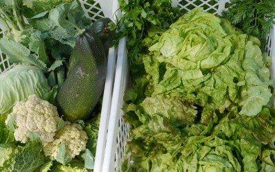 Veggies für ältere Nachbarn